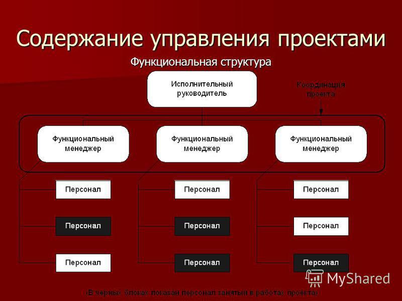 Содержание управления проектами Функциональная структура