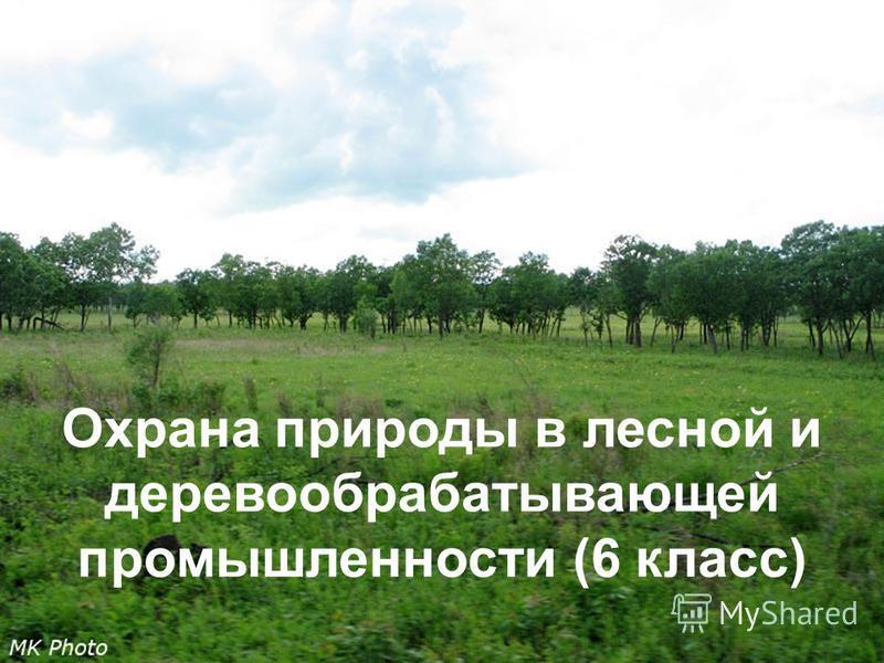 Правила поведения в лесу Правила поведения в лесу. Берюхова елена. Охрана природы в лесной и деревообрабатывающей промышленности (6 класс)