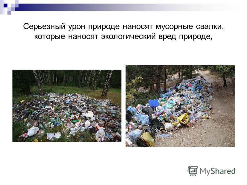Серьезный урон природе наносят мусорные свалки, которые наносят экологический вред природе,