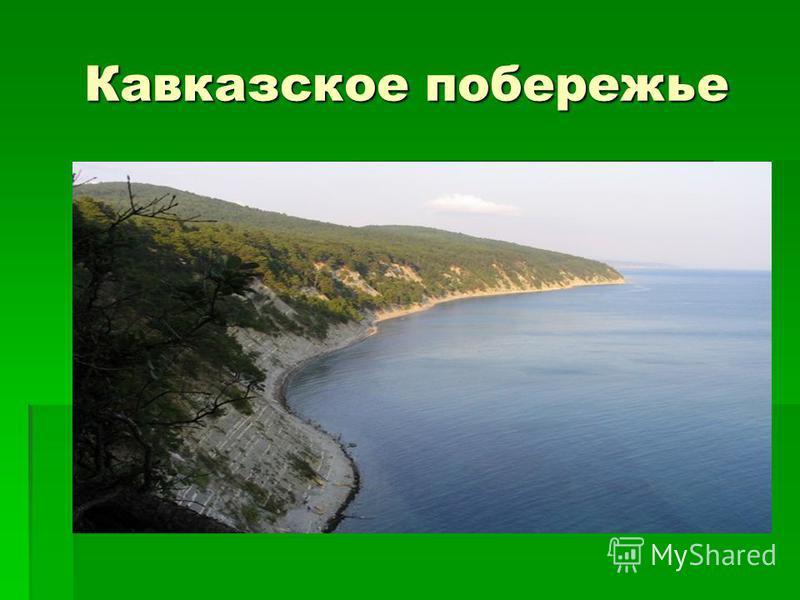 Кавказское побережье