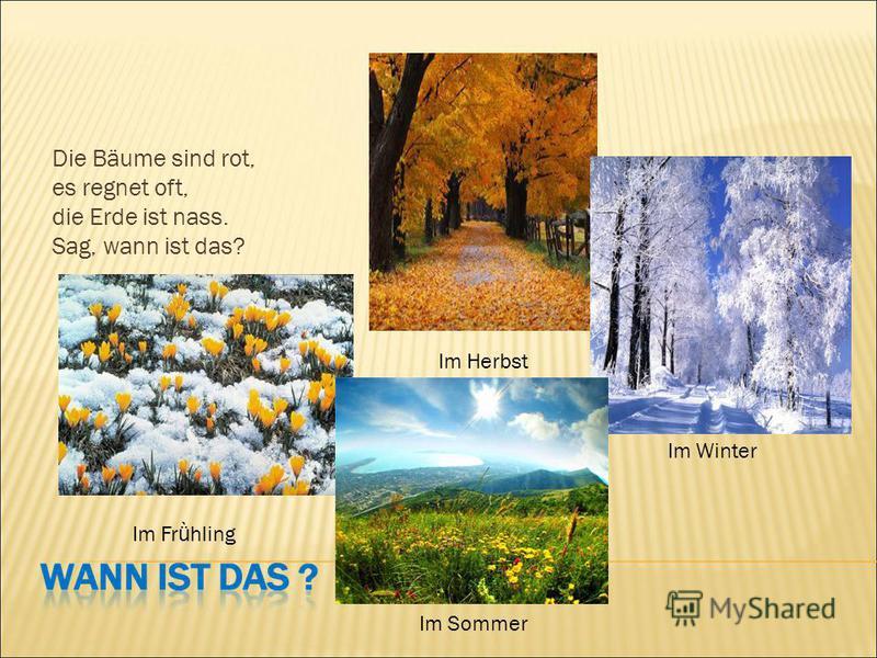 Die Bäume sind rot, es regnet oft, die Erde ist nass. Sag, wann ist das? Im Herbst Im Winter Im Fr ǜ hling Im Sommer