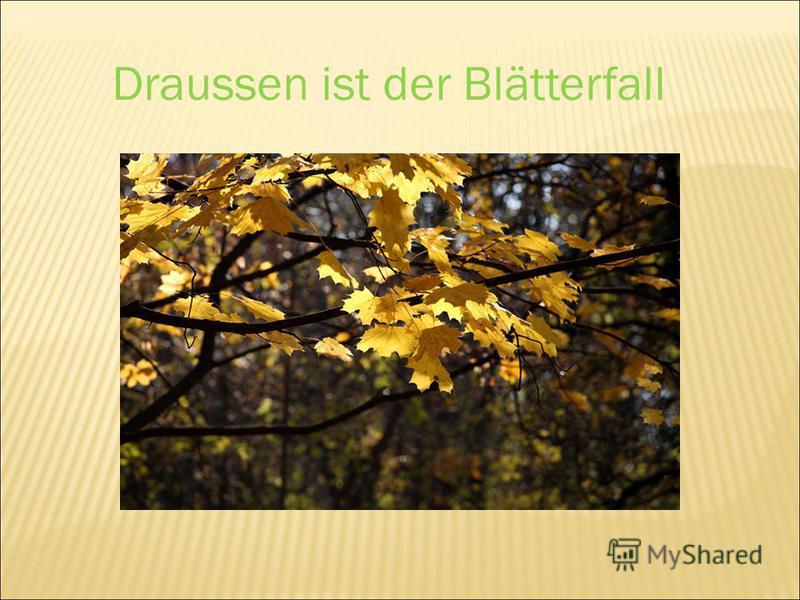Draussen ist der Blätterfall