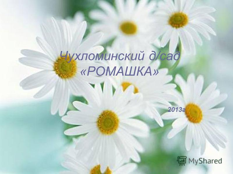 Чухломинский д/сад «РОМАШКА» 2013 г
