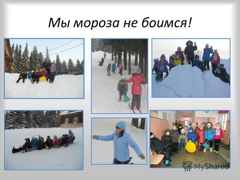 Мы мороза не боимся!