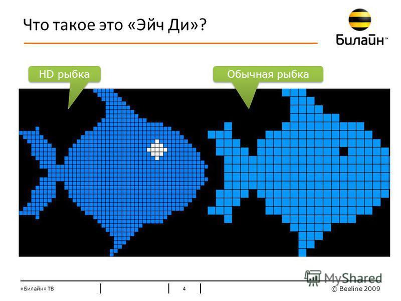© Beeline 2009 Стандартные цвета Билайн Что такое это «Эйч Ди»? «Билайн» ТВ4 HD рыбка Обычная рыбка
