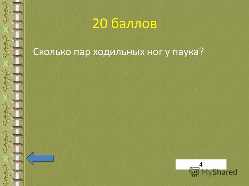20 баллов Сколько пар ходильных ног у паука? 4