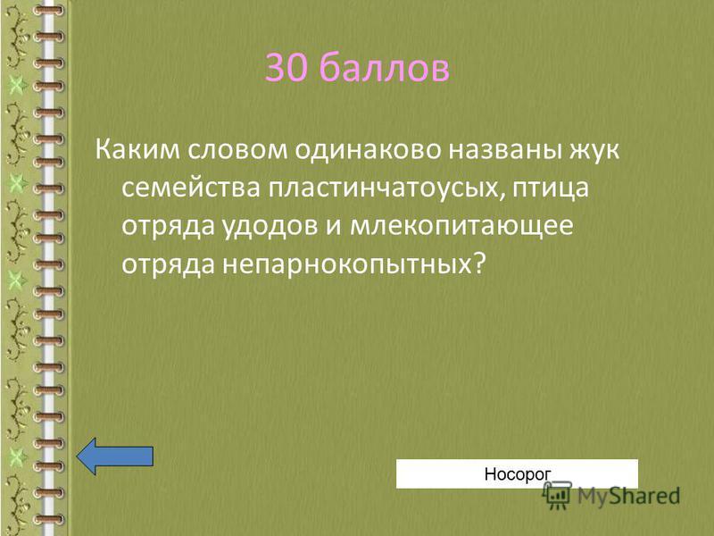 30 баллов Каким словом одинаково названы жук семейства пластинчатоусых, птица отряда удодов и млекопитающее отряда непарнокопытных? Носорог