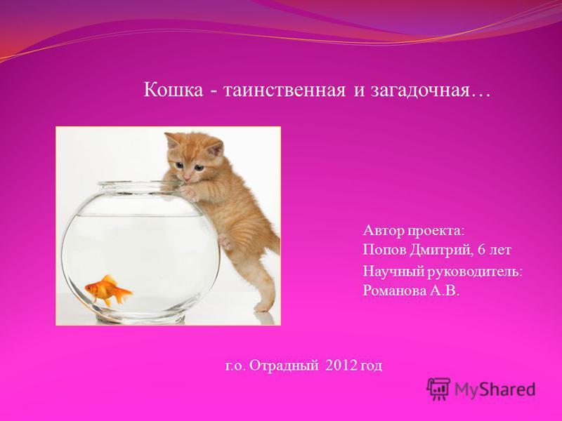 Кошка - таинственная и загадочная… Автор проекта: Попов Дмитрий, 6 лет Научный руководитель: Романова А.В. г.о. Отрадный 2012 год