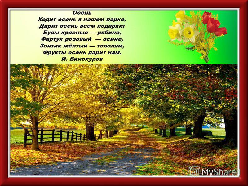 Осень Ходит осень в нашем парке, Дарит осень всем подарки: Бусы красные рябине, Фартук розовый осине, Зонтик жёлтый тополям, Фрукты осень дарит нам. И. Винокуров