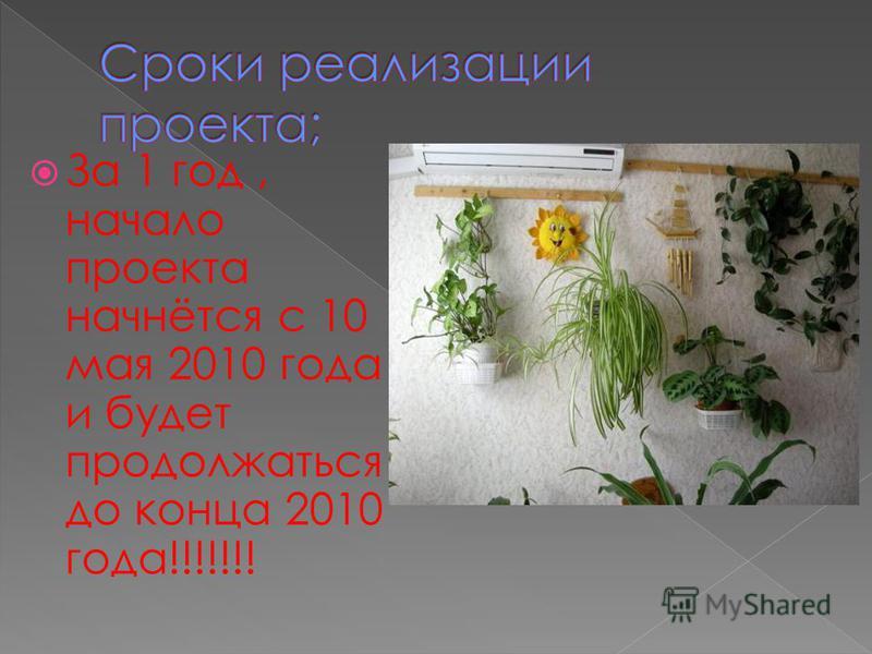 За 1 год, начало проекта начнётся с 10 мая 2010 года и будет продолжаться до конца 2010 года!!!!!!!