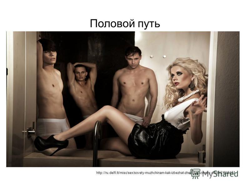Половой путь http://ru.delfi.lt/misc/sex/sovety-muzhchinam-kak-izbezhat-zhenskoj-izmeny.d?id=61246451