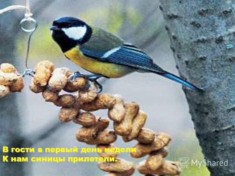 http://images.yandex.ru/yandsearch?noreask=1&lr=35&rpt=simage&ed=1&text=анимационные%20 картинки%20 о%20 зимhttp://images.yandex.ru/yandsearch?noreask=1&lr=35&rpt=simage&ed=1&text=анимационные%20 картинки%20 о%20 зим http://miranimashek.com/photo/418