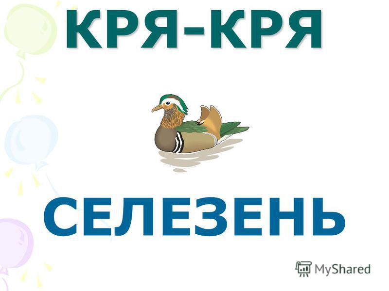 КРЯ - КРЯ УТКА