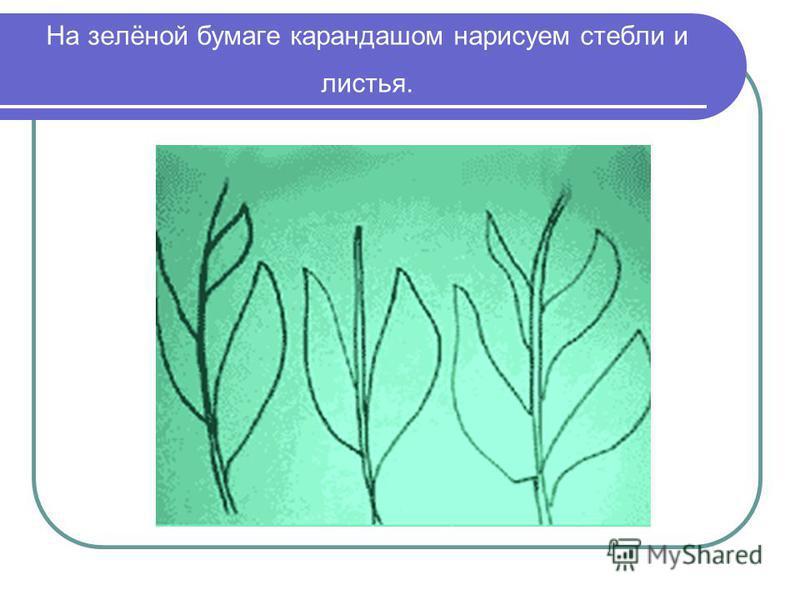 На зелёной бумаге карандашом нарисуем стебли и листья.
