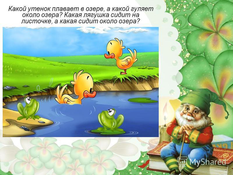 Какой утенок плавает в озере, а какой гуляет около озера? Какая лягушка сидит на листочке, а какая сидит около озера?