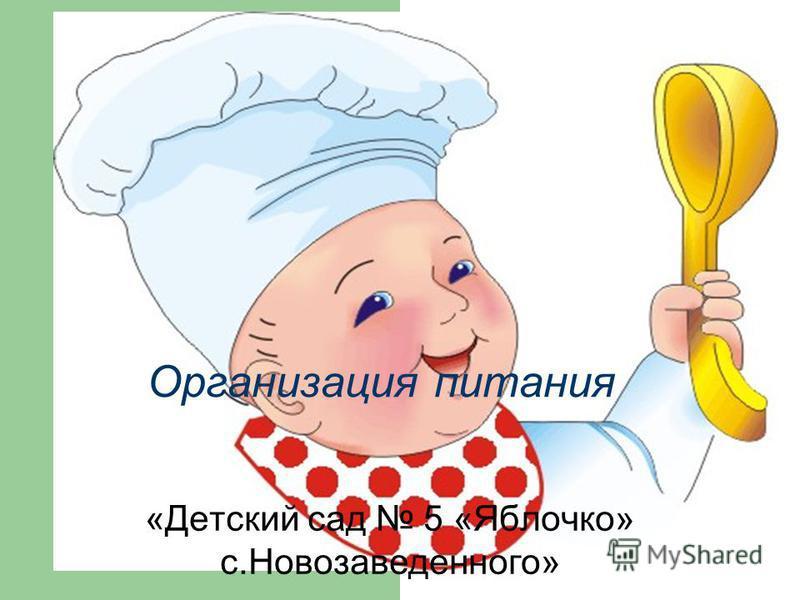 Организация питания «Детский сад 5 «Яблочко» с.Новозаведенного»