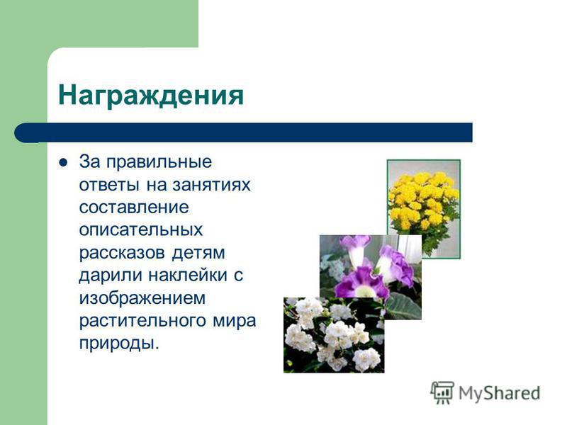 Награждения За правильные ответы на занятиях составление описательных рассказов детям дарили наклейки с изображением растительного мира природы.