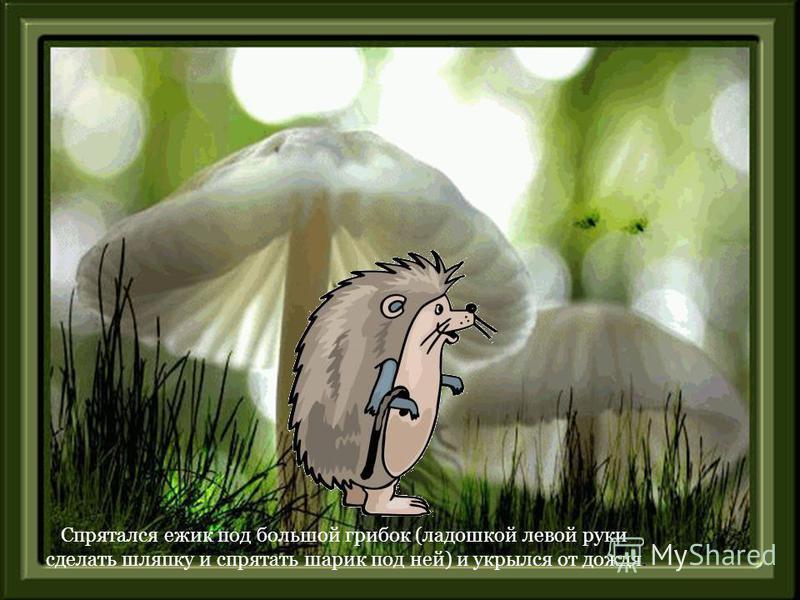 Спрятался ежик под большой грибок (ладошкой левой руки сделать шляпку и спрятать шарик под ней) и укрылся от дождя.
