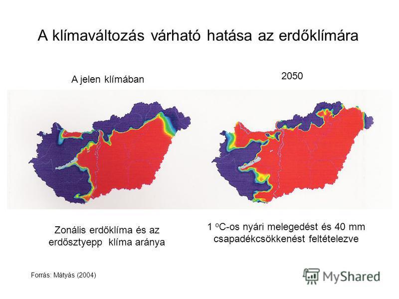 A klímaváltozás várható hatása az erdőklímára A jelen klímában 1 o C-os nyári melegedést és 40 mm csapadékcsökkenést feltételezve 2050 Forrás: Mátyás (2004) Zonális erdőklíma és az erdősztyepp klíma aránya