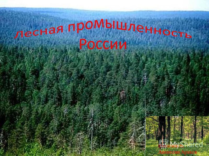 Выполнила: Аванесян Аракся