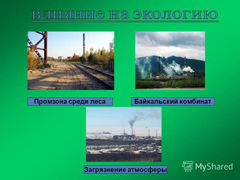 Промзона среди леса Байкальский комбинат Загрязнение атмосферы