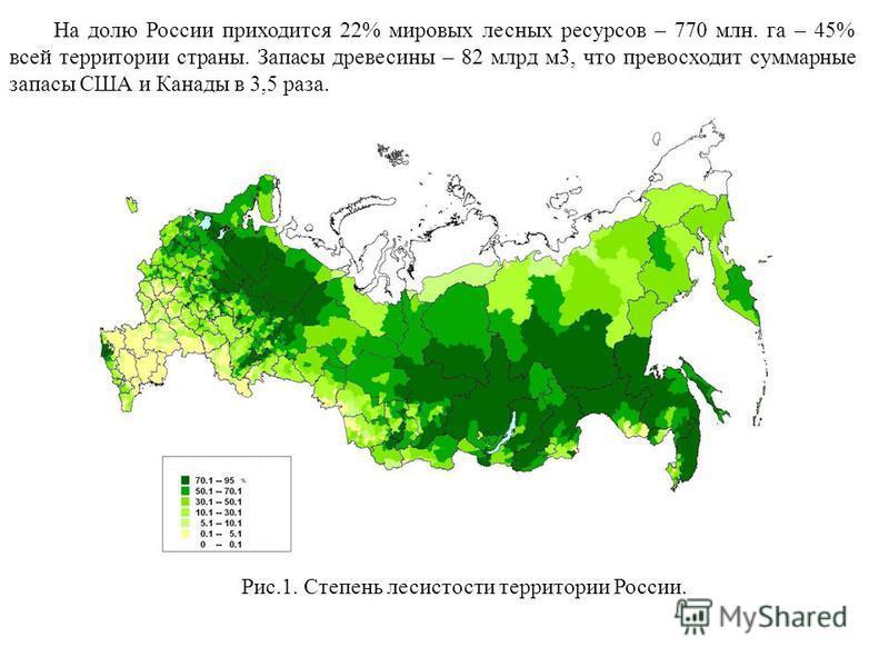 На долю России приходится 22% мировых лесных ресурсов – 770 млн. га – 45% всей территории страны. Запасы древесины – 82 млрд м 3, что превосходит суммарные запасы США и Канады в 3,5 раза. Рис.1. Степень лесистости территории России.