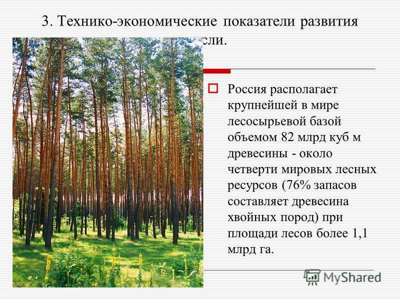 3. Технико-экономические показатели развития отрасли. Россия располагает крупнейшей в мире лесосырьевой базой объемом 82 млрд куб м древесины - около четверти мировых лесных ресурсов (76% запасов составляет древесина хвойных пород) при площади лесов