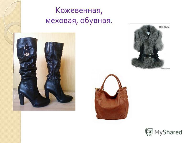 Кожевенная, меховая, обувная.