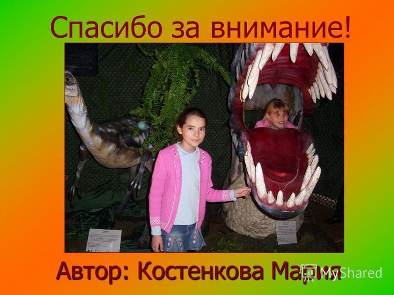 Автор: Костенкова Мария Спасибо за внимание!