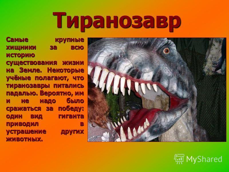 Тиранозавр Самые крупные хищники за всю историю существования жизни на Земле. Некоторые учёные полагают, что тираннозавры питались падалью. Вероятно, им и не надо было сражаться за победу: один вид гиганта приводил в устрашение других животных.