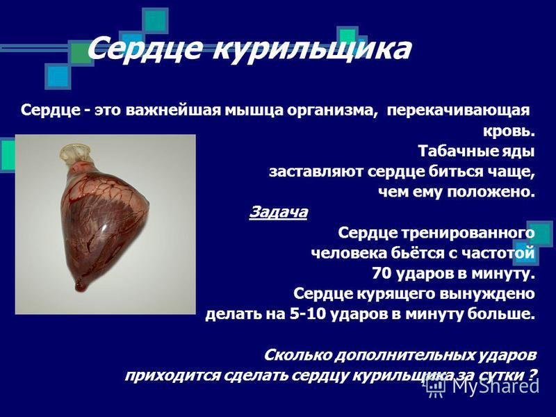 Сердце курильщика Сердце - это важнейшая мышца организма, перекачивающая кровь. Табачные яды заставляют сердце биться чаще, чем ему положено. Задача Сердце тренированного человека бьётся с частотой 70 ударов в минуту. Сердце курящего вынуждено делать