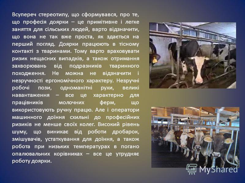 Всупереч стереотипу, що сформувався, про те, що професія доярки – це примітивне і легке заняття для сільських людей, варто відзначити, що вона не так вже проста, як здається на перший погляд. Доярки працюють в тісному контакті з тваринами. Тому варто
