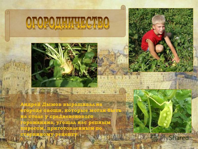 Андрей Дымов выращивал на огороде овощи, которые могли быть на столе у средневекового горожанина, угощал нас репным пирогом, приготовленным по старинному рецепту.
