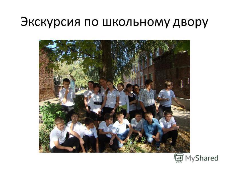 Экскурсия по школьному двору