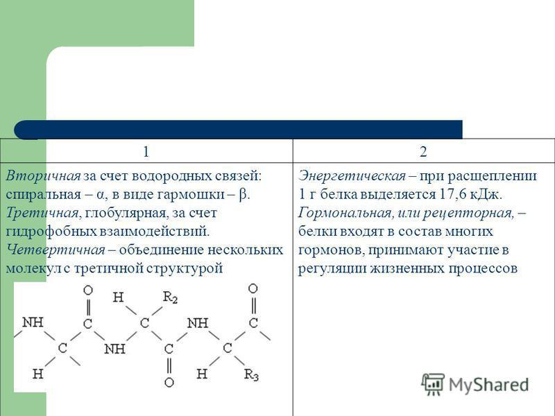 12 Вторичная за счет водородных связей: спиральная – α, в виде гармошки – β. Третичная, глобулярная, за счет гидрофобных взаимодействий. Четвертичная – объединение нескольких молекул с третичной структурой Энергетическая – при расщеплении 1 г белка в