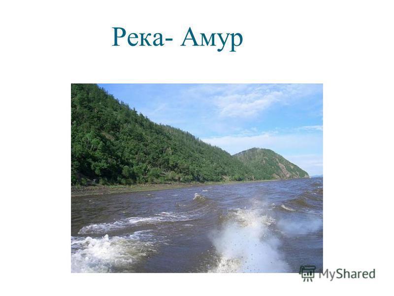 Река- Амур