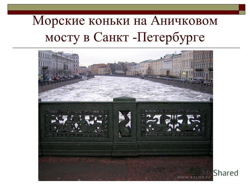 Морские коньки на Аничковом мосту в Санкт -Петербурге