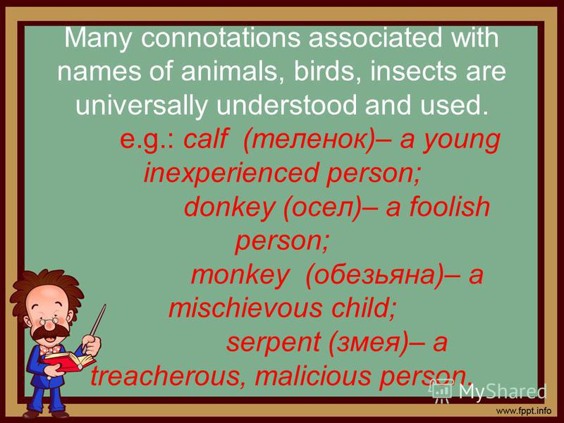 Many connotations associated with names of animals, birds, insects are universally understood and used. e.g.: calf (теленок)– a young inexperienced person; donkey (осел)– a foolish person; monkey (обезьяна)– a mischievous child; serpent (змея)– a tre