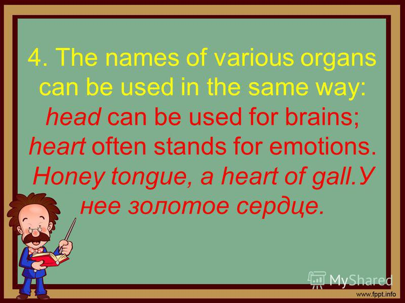 4. The names of various organs can be used in the same way: head can be used for brains; heart often stands for emotions. Honey tongue, a heart of gall.У нее золотое сердце.