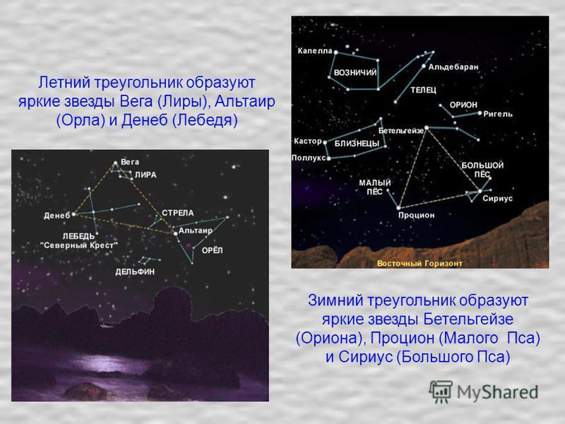 Зимний треугольник образуют яркие звезды Бетельгейзе (Ориона), Процион (Малого Пса) и Сириус (Большого Пса) Летний треугольник образуют яркие звезды Вега (Лиры), Альтаир (Орла) и Денеб (Лебедя)