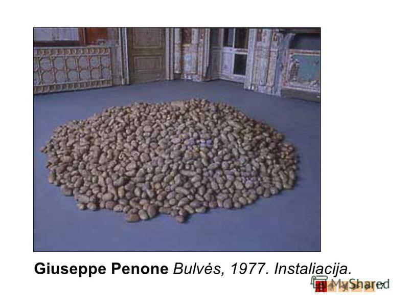 17 Giuseppe Penone Bulvės, 1977. Instaliacija.