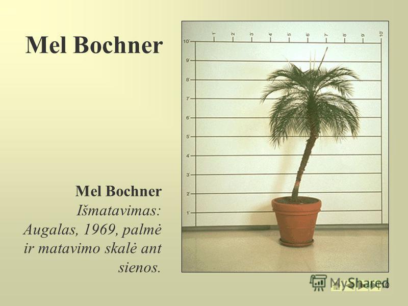 10 Mel Bochner Išmatavimas: Augalas, 1969, palmė ir matavimo skalė ant sienos. Mel Bochner