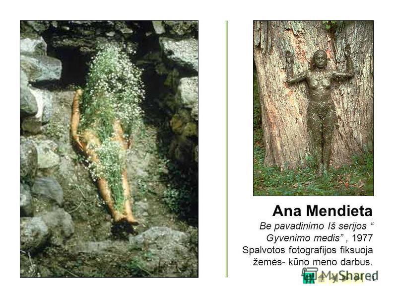 11 Ana Mendieta Be pavadinimo Iš serijos Gyvenimo medis, 1977 Spalvotos fotografijos fiksuoja žemės- kūno meno darbus.