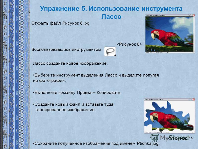 Упражнение 5. Использование инструмента Лассо Открыть файл Рисунок 6.jpg. Воспользовавшись инструментом Лассо создайте новое изображение. Выберите инструмент выделения Лассо и выделите попугая на фотографии. Выполните команду Правка – Копировать. Соз