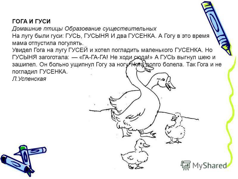 ГОГА И ГУСИ Домашние птицы Образование существительных На лугу были гуси: ГУСЬ, ГУСЫНЯ И два ГУСЕНКА. А Гогу в это время мама отпустила погулять. Увидел Гога на лугу ГУСЕЙ и хотел погладить маленького ГУСЕНКА. Но ГУСЫНЯ загоготала: «ГА-ГА-ГА! Не хо