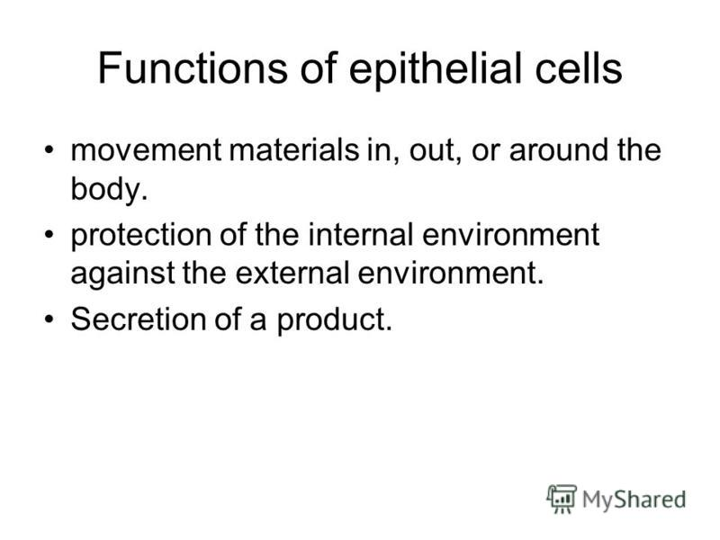 Functions of epithelial cells movement materials in, out, or around the body. protection of the internal environment against the external environment. Secretion of a product.