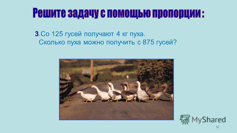 12 3. Со 125 гусей получают 4 кг пуха. Сколько пуха можно получить с 875 гусей?
