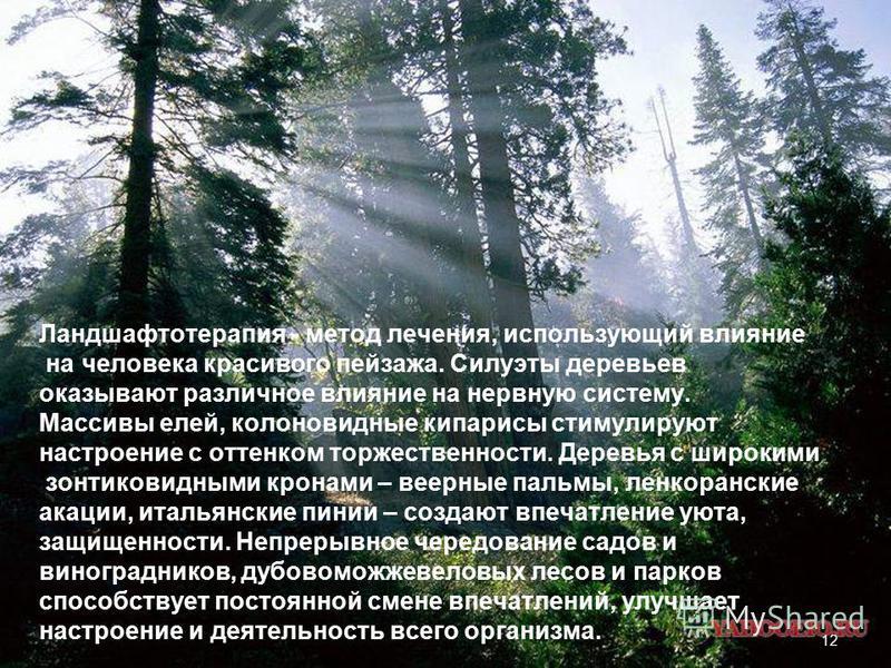 Ландшафтотерапия - метод лечения, использующий влияние на человека красивого пейзажа. Силуэты деревьев оказывают различное влияние на нервную систему. Массивы елей, колоновидные кипарисы стимулируют настроение с оттенком торжественности. Деревья с ши