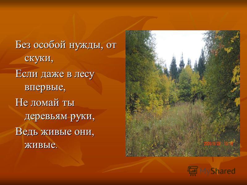 Без особой нужды, от скуки, Если даже в лесу впервые, Не ломай ты деревьям руки, Ведь живые они, живые.