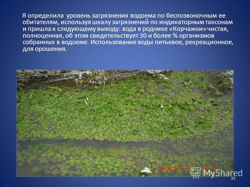 Я определила уровень загрязнения водоема по беспозвоночным ее обитателям, используя шкалу загрязнений по индикаторным таксонам и пришла к следующему выводу: вода в роднике «Корчажки» чистая, полноценная, об этом свидетельствует 30 и более % организмо
